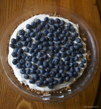 Yogurt Berry Pie