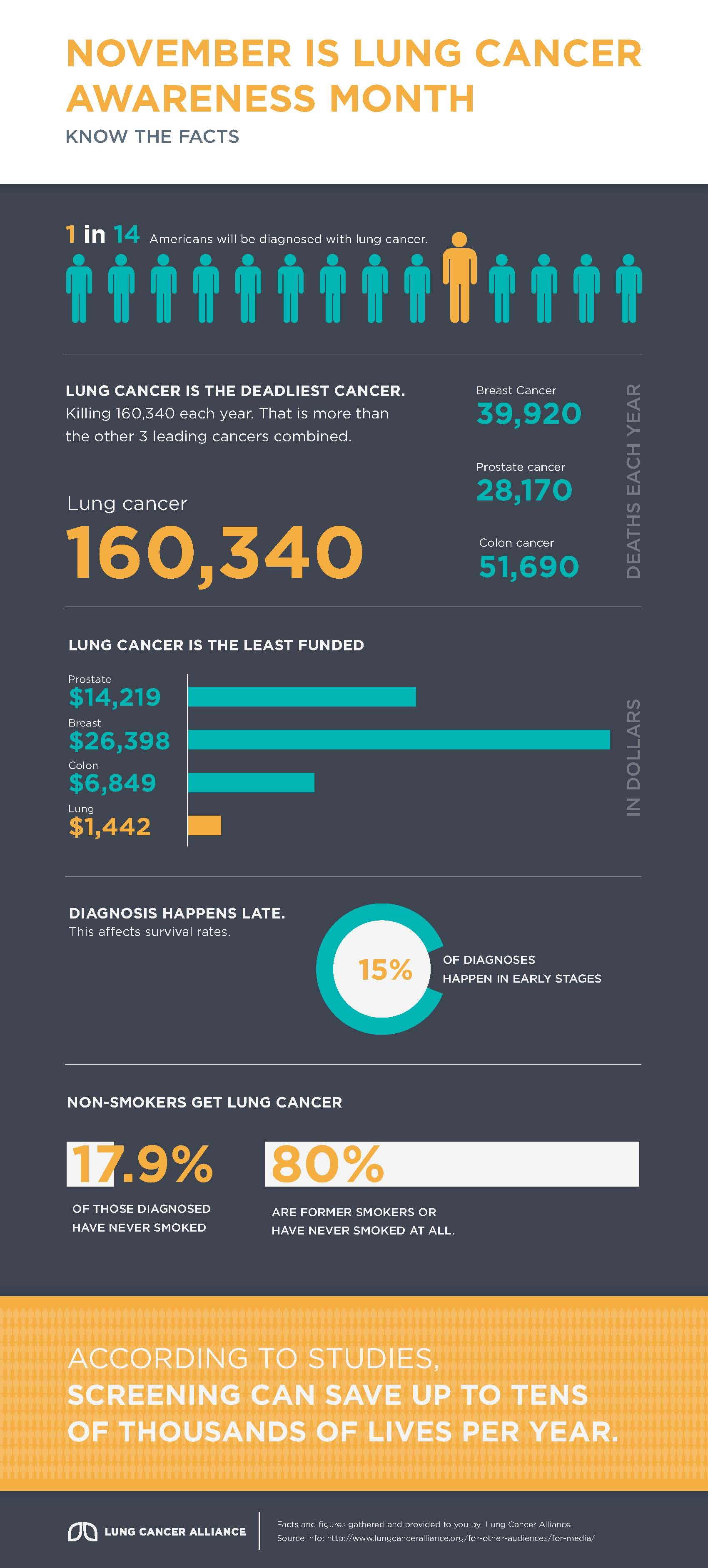 Lung Cancer Awareness Month Infographic