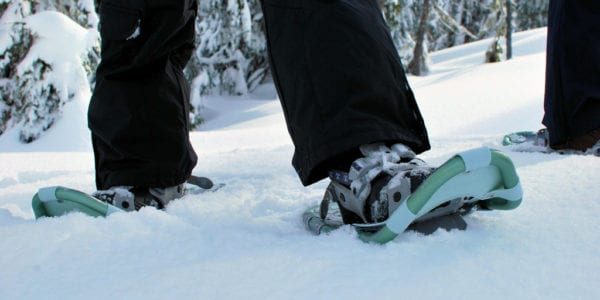 winter in snowshoes