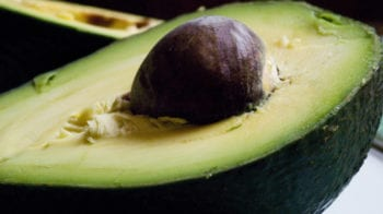avocado close up