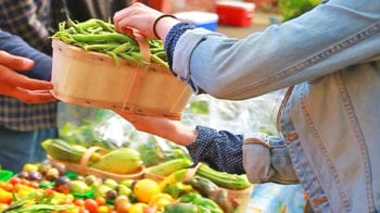 healthy food around Michigan's colleges
