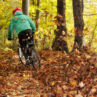 Mountain biker rides through fall leaves in a forest.