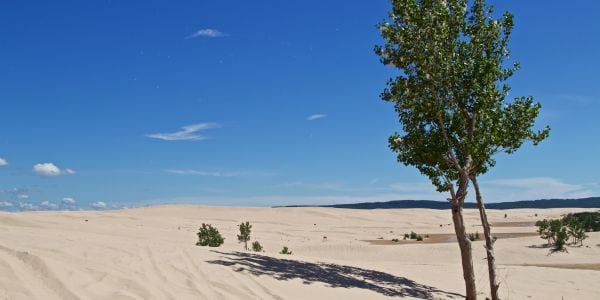 Silver Lake State Park Sand Dunes